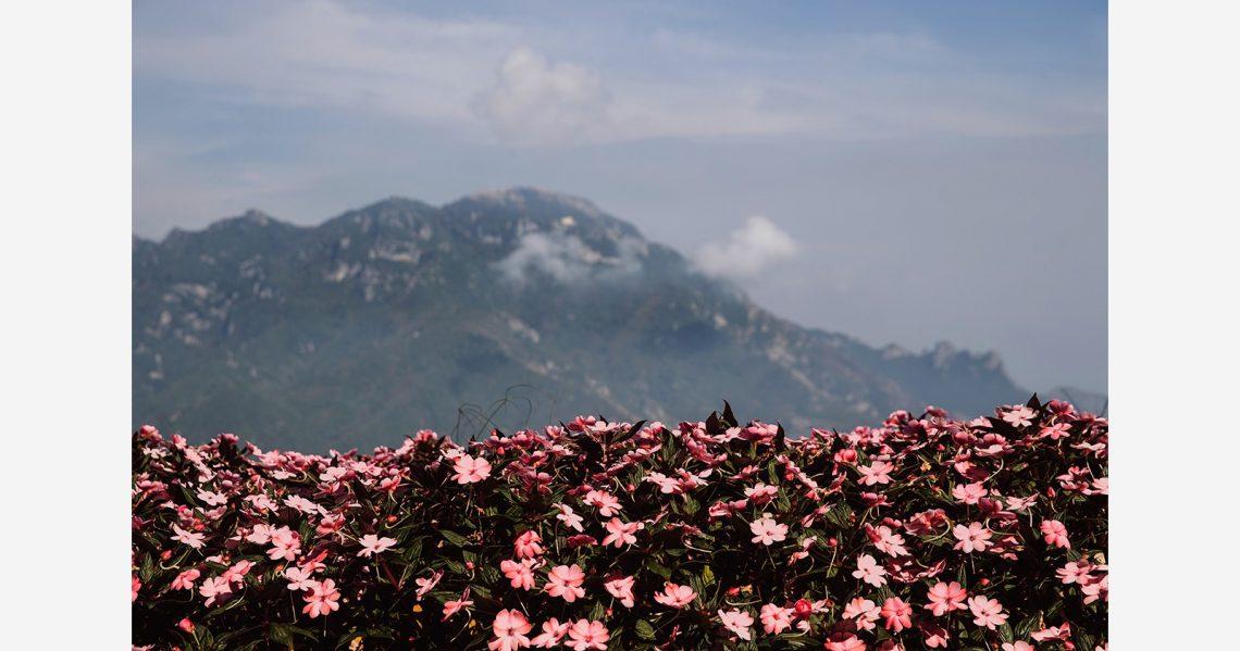 joanne-dunn-amalfi-coast-067
